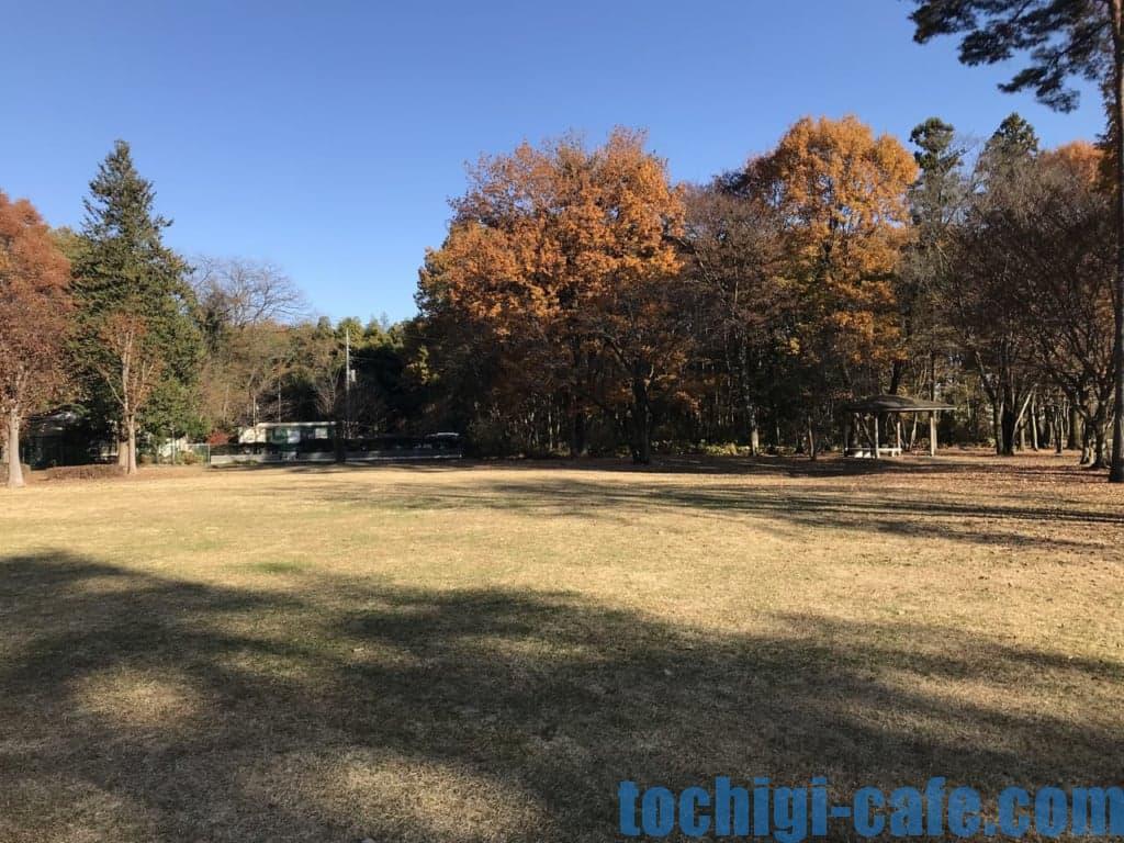 中岡本緑公園のふれあい通り方面